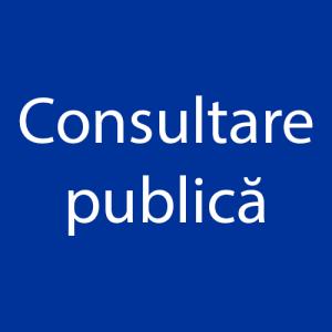 Consultare publiсă