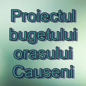 Proiectul bugetului orașului Căușeni pentru anul 2017